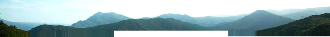Rodastur Ingenieros Agrícola Forestal y Obra Civil en Tineo, Asturias